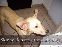 Skinny Benson in the Early Days