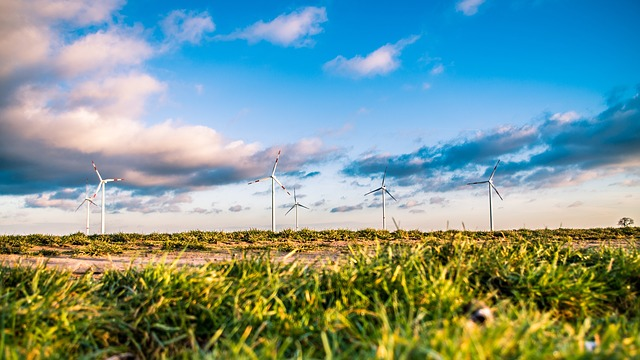 A CSR fund to boost rural economic & environmental development (Kenya, Malawi, Mozambique, Nigeria and Tanzania)