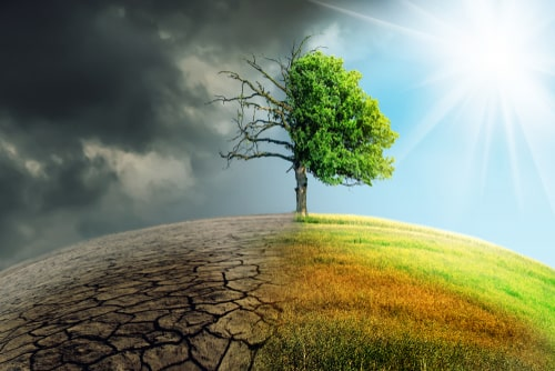 Invitation for Projects delivering Climate Resilience benefits in Low- and Middle-income Countries