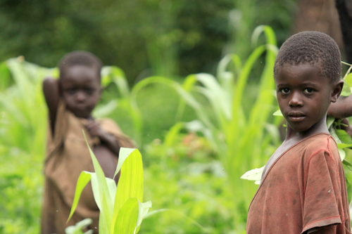 Financial Support for Conservation-based Community Activities in Africa