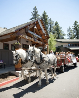 Cowboy Carriage Horse Drawn Brewery Tour at Cascade Lakes Brewery