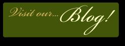 Button - Visit Our Blog