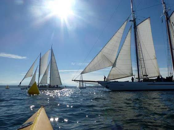 Shipwright's Regatta