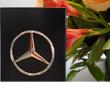 Mercedes-Benz BlueEfficiency Award