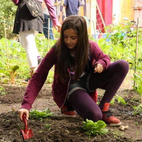 Foto: Schülerin beim Graben