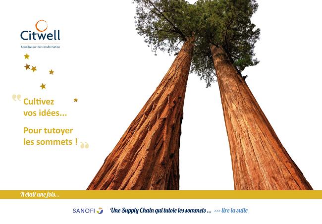 Citwell aide les entreprises à cultiver les idées pour tutoyer les sommets