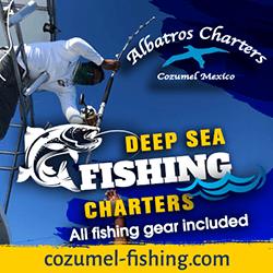 Albatros Charters