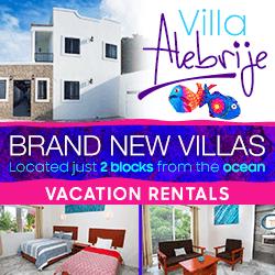 Villa Alebrije