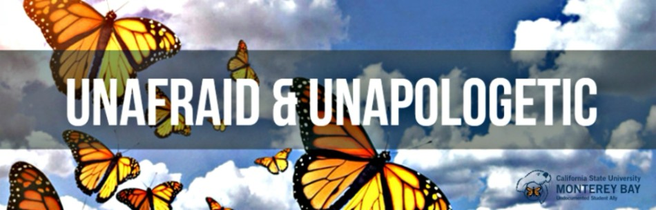 Undocumented Students website
