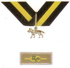 Silver Acorn