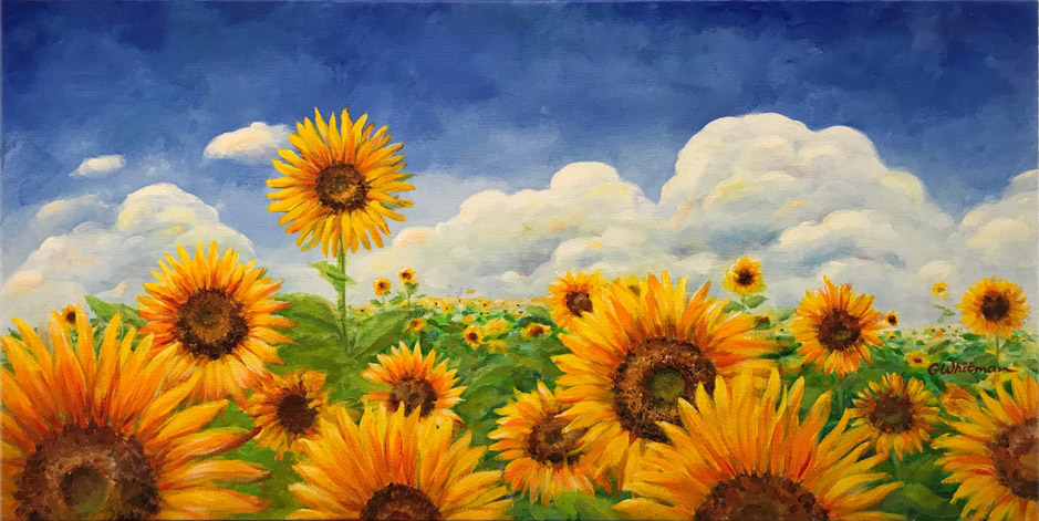 Gale's revised sunflower field painting