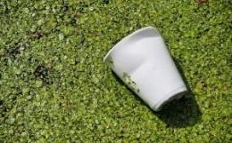 Texte sur les erreurs du bac de recyclage