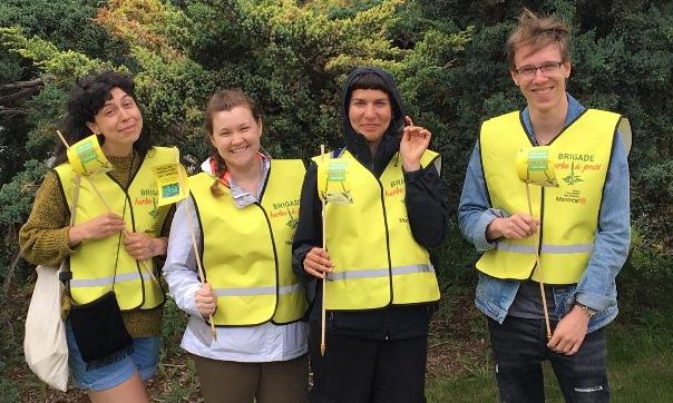 Les bénévoles de Ville en Vert pour des activités d'arrachage d'herbe à poux