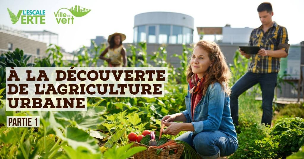 À la découverte de l'agriculture urbaine - partie 1