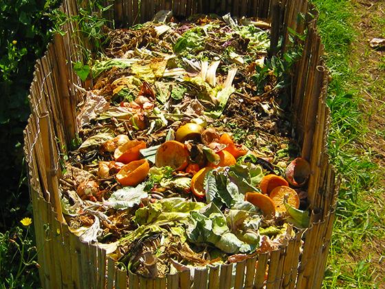 Image compost