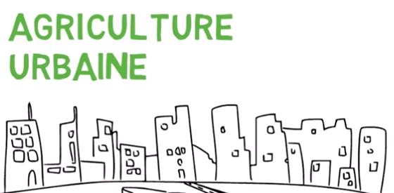 Topo sur l'agriculture urbaine