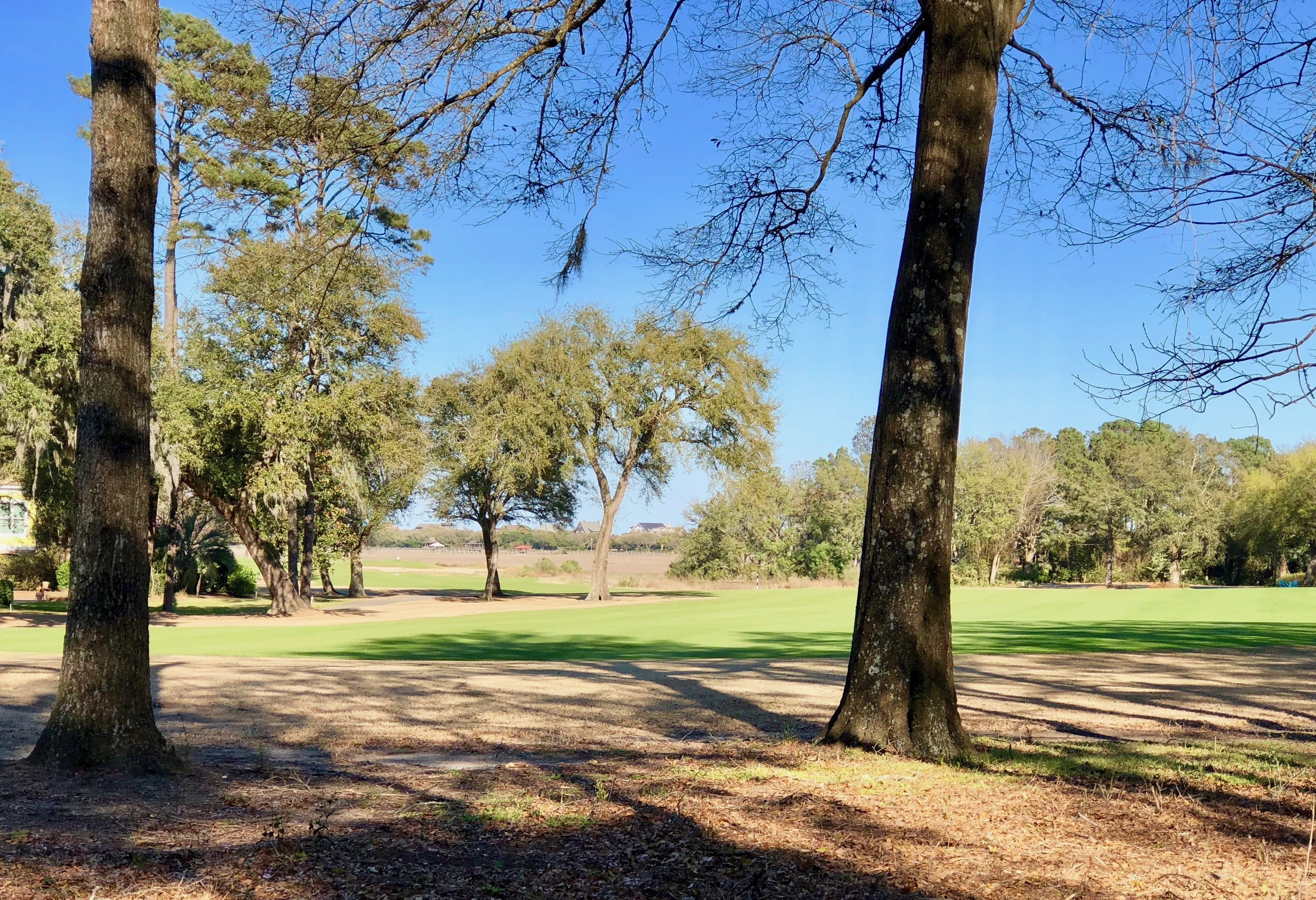 A long view out to the marsh from the back of a lot for sale on the dogleg left 16th hole at Pawleys Plantation, Pawleys Island, SC.  If interested, please contact me.