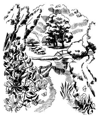 Illustration by John Nash from Slightly Foxed Issue 40