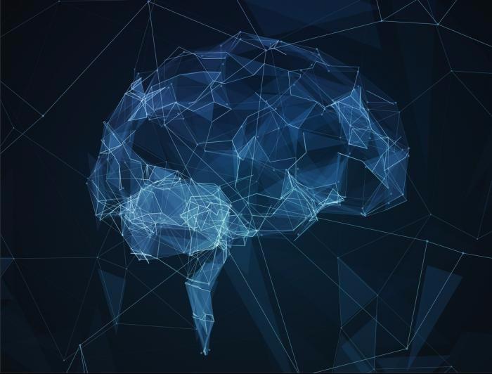 Una aventura científica: De las partículas elementales al conocimiento