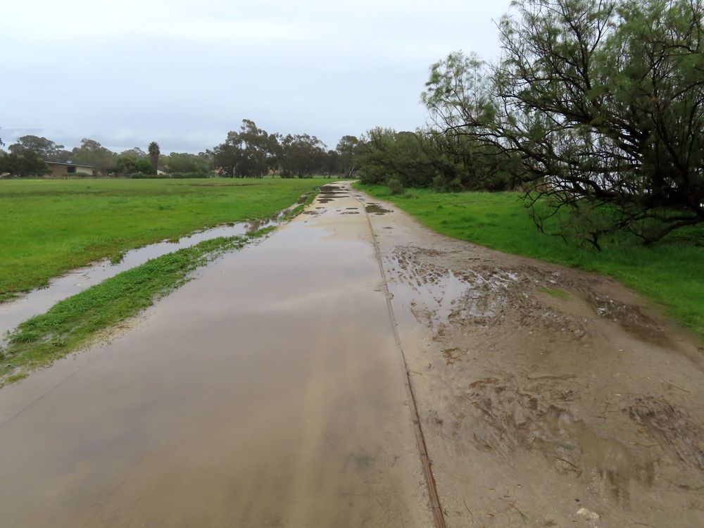 The flooded and rutted DG (decomposed granite) trail at West Campus Bluffs.