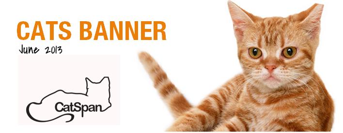 Cats Banner Newsletter June 2013