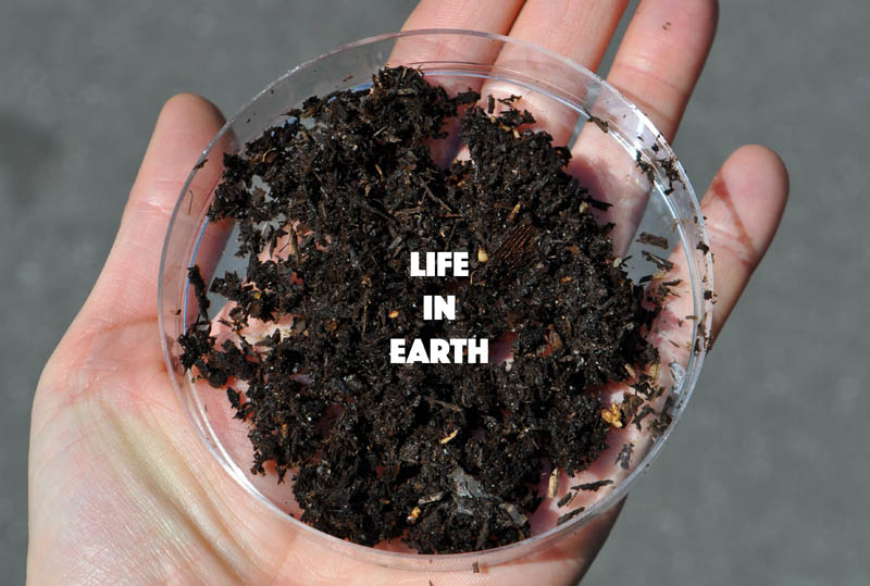 Life in Earth