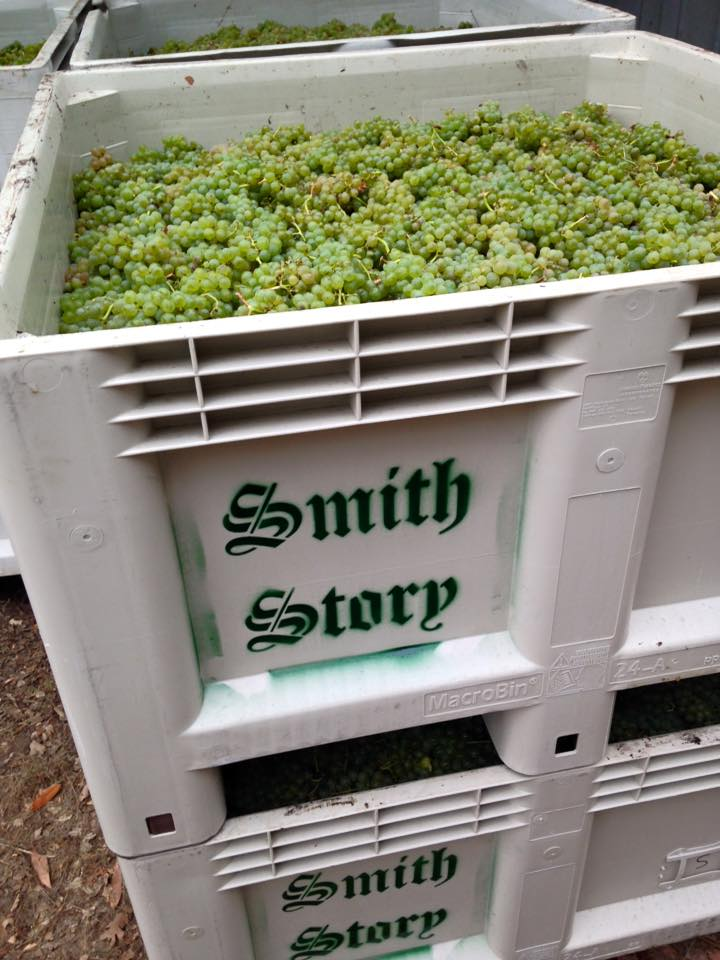 Smith Story Sauvignon Blanc