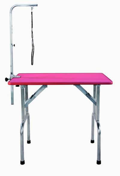 Large S/S Folding Grooming Table