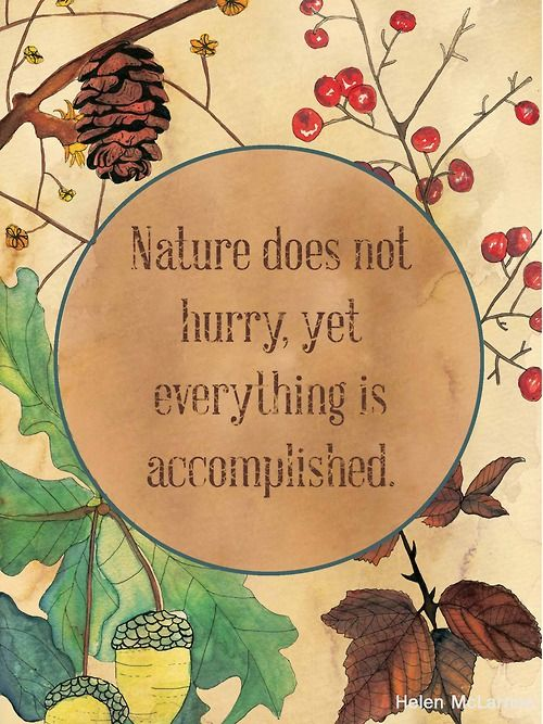 Nature does not hurry, yet everything is accomplished