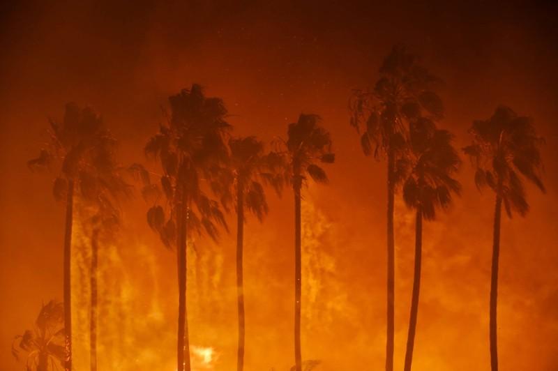 California is Burning: Rethinking the Wildland/ (Sub)urban Interface