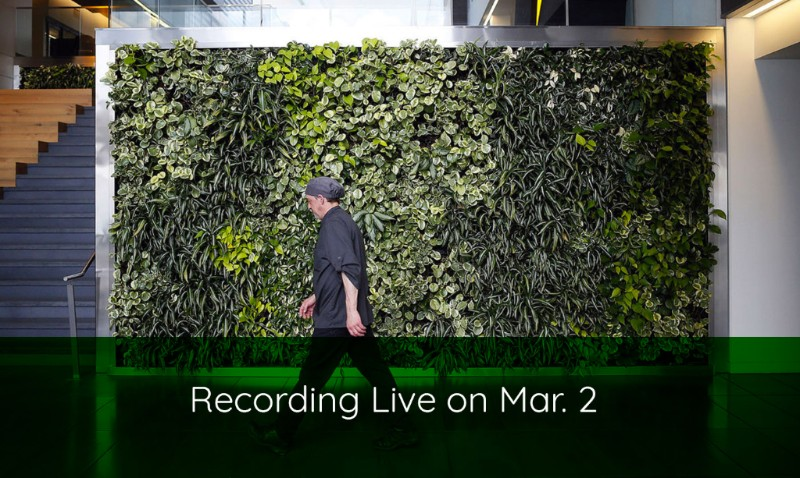 Guest Webinar: Living Walls Made Easy by Sean Brennan