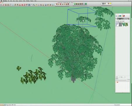 SKETCHUP TREE WEBINAR