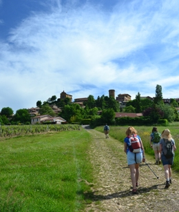 Walking in the Beaujolais