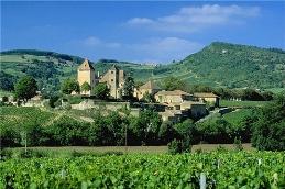 Burgundy: Historic Walks in Chardonnay Country