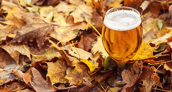 Fall Beers | Utah Beer News