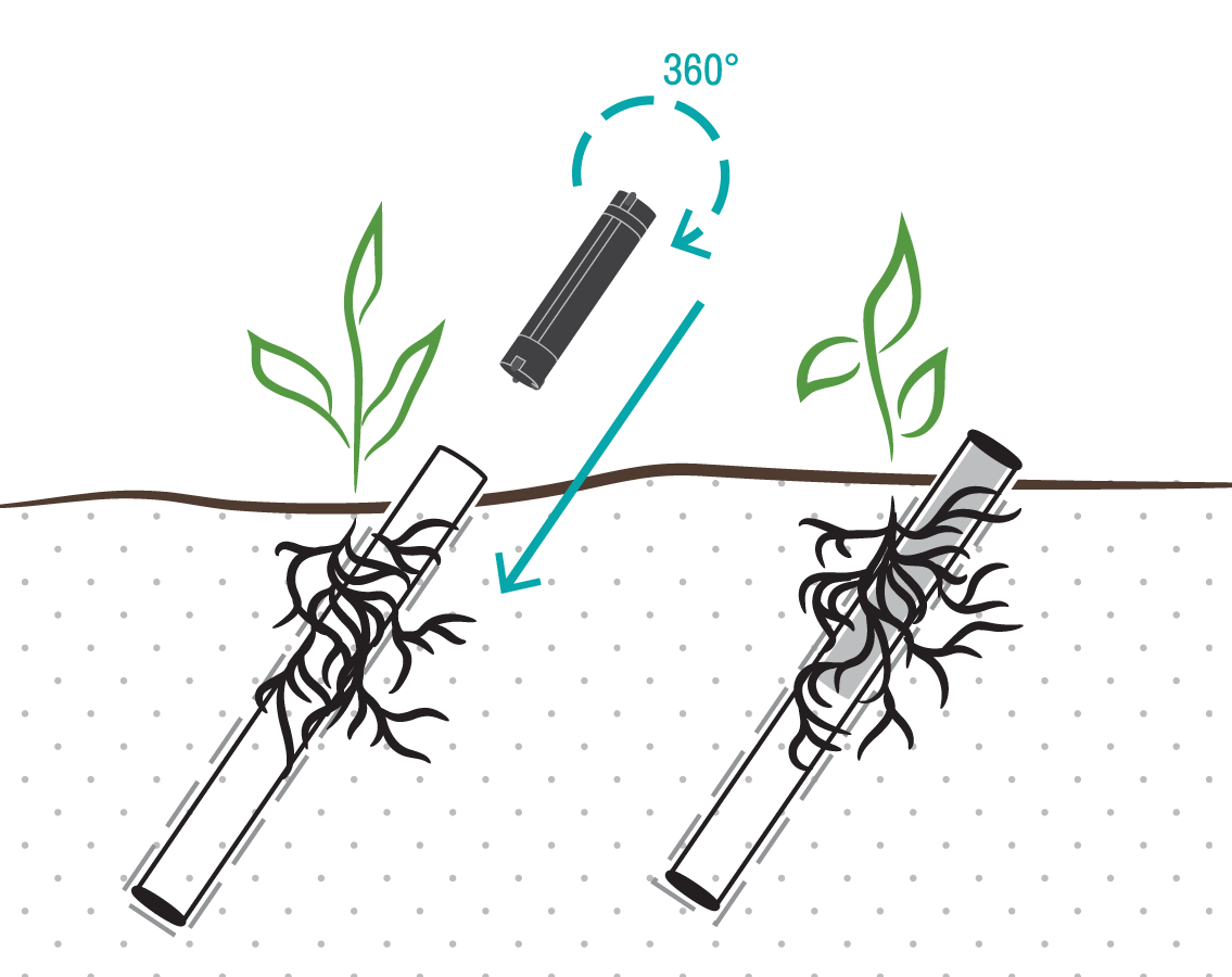 Minirhizotrons allow researchers to study roots while they're living in the soil.
