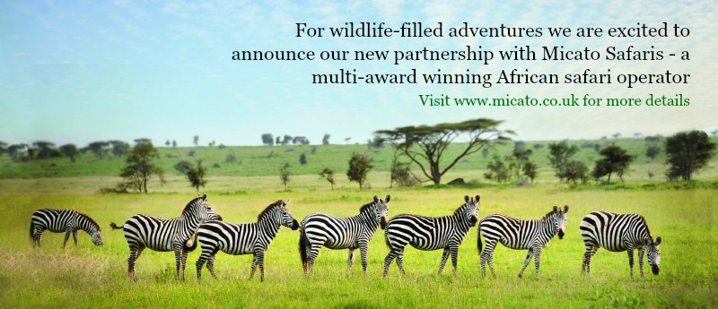 Africa & India Safaris with Micato
