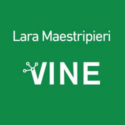 Proyecto VINE