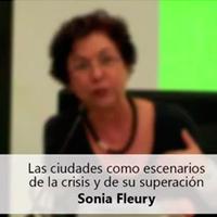 Sonia Fleury Seminario Brasil EU