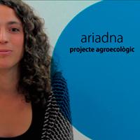Ariadna_un projecte estArter