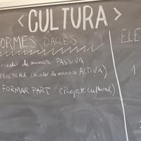 Mestre Morera IAP cultura