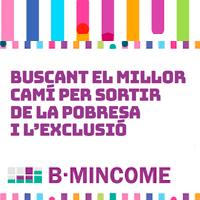 BMincome project