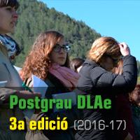 Postgrau DLAe