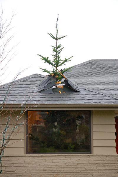 Christmas tree popping out of the roof