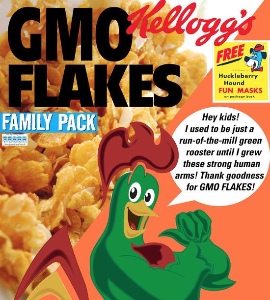 GMO Flakes by Kellogg's