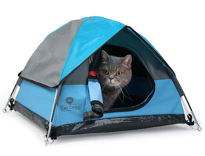 Tiny tent for cats