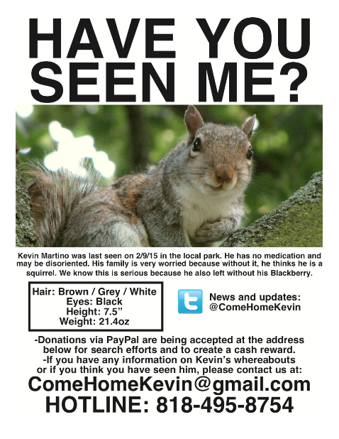Come Home Kevin the Squirrel