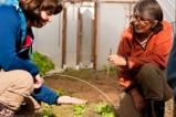 Farm Mentoring