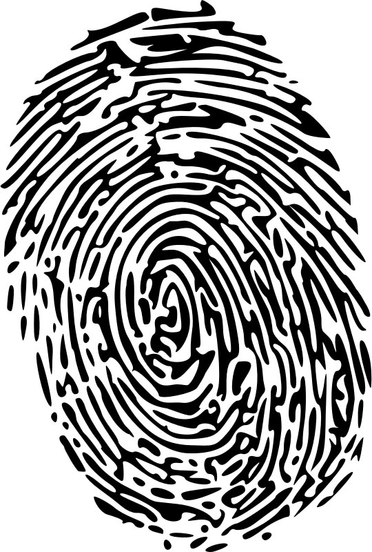 fingerprint graphic