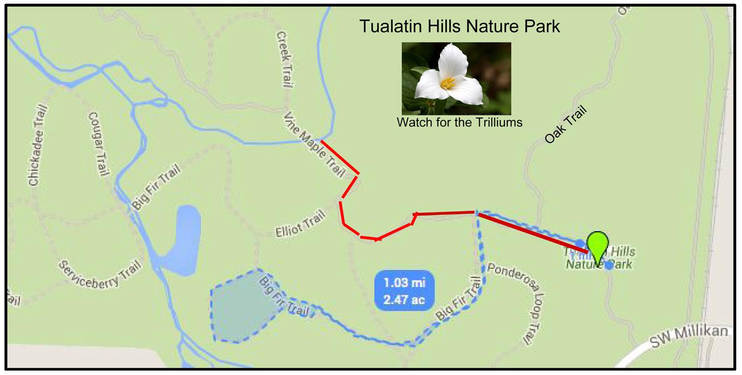 Tualatin Nature park